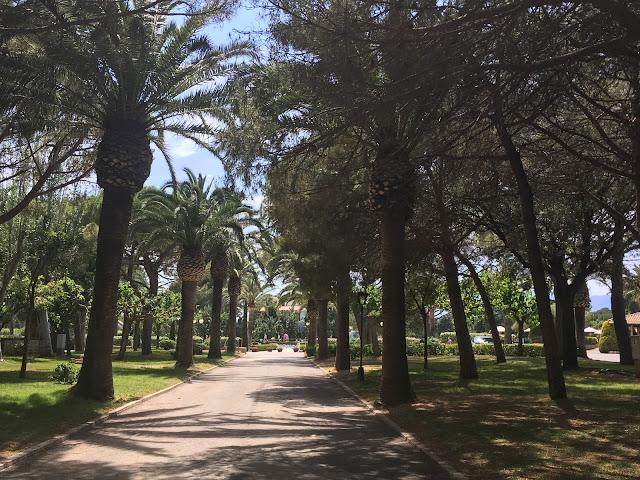 playa montroig avenue