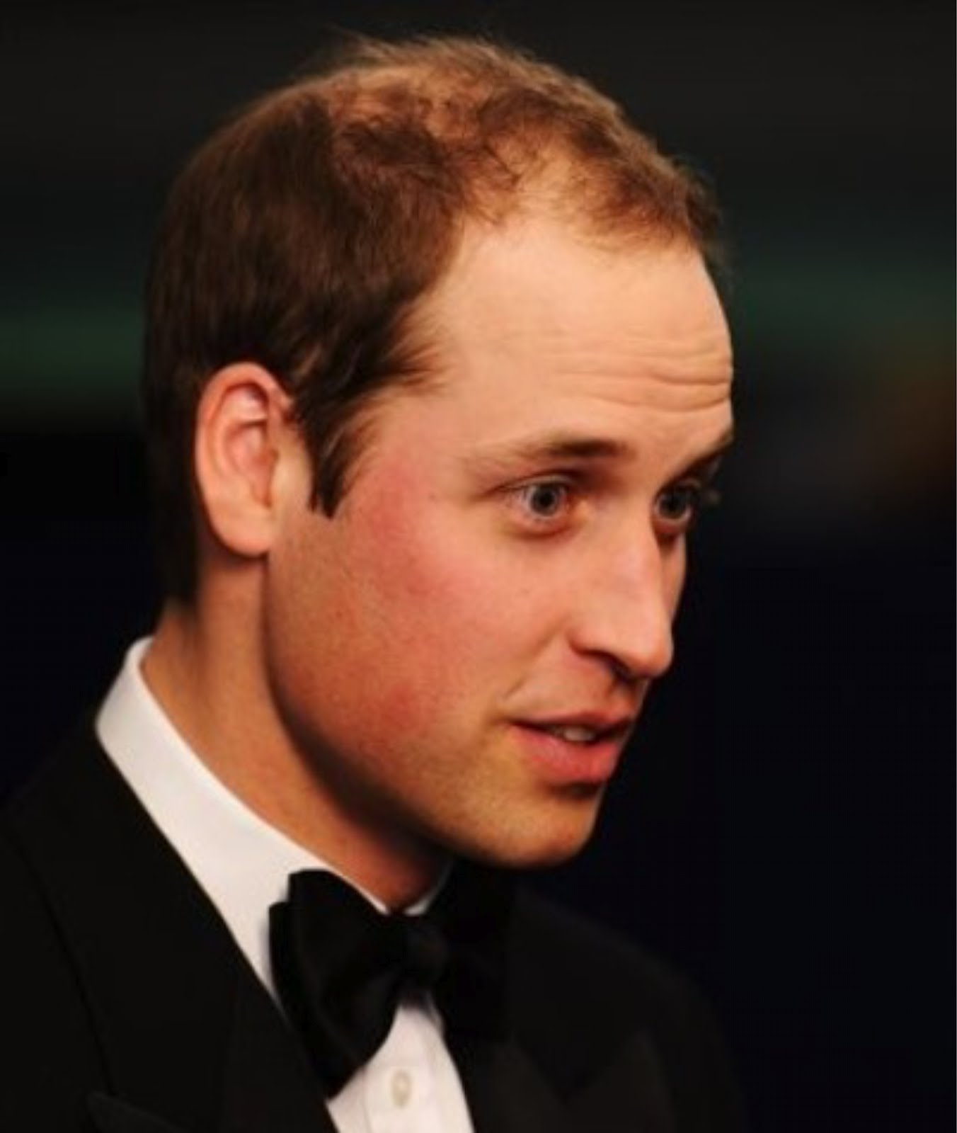 european bloodlines face end time vortex of exposure recommended charles is the heir apparent first in line of succession and william is second in line of succession to the british throne