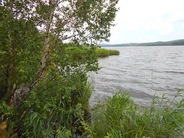 Озеро Сугомак под Кыштымом