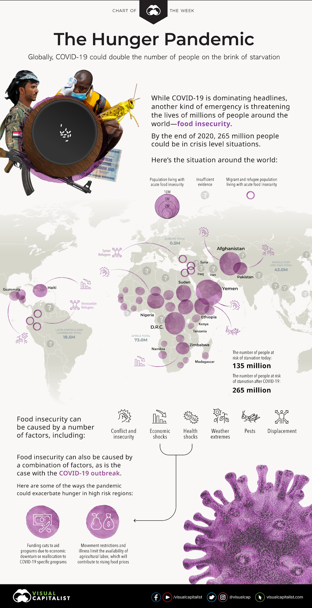 The Hunger Pandemic #infographic