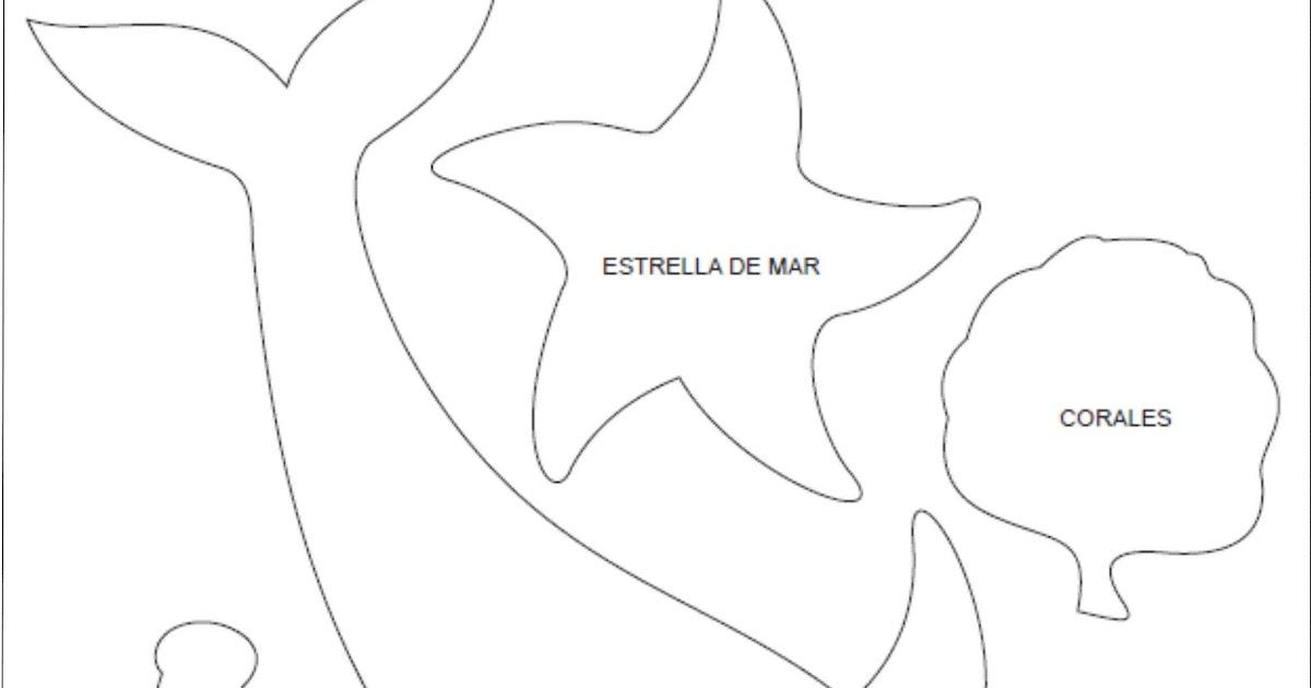 Desenho De Estrela Do Mar Para Imprimir