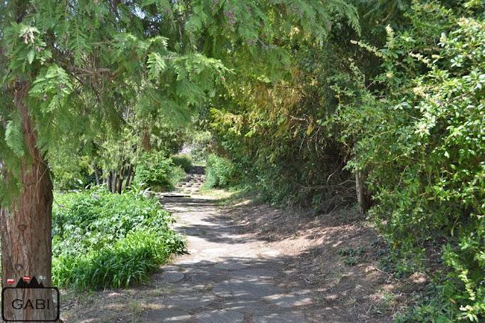 Kurpark Oberlaa wiosną