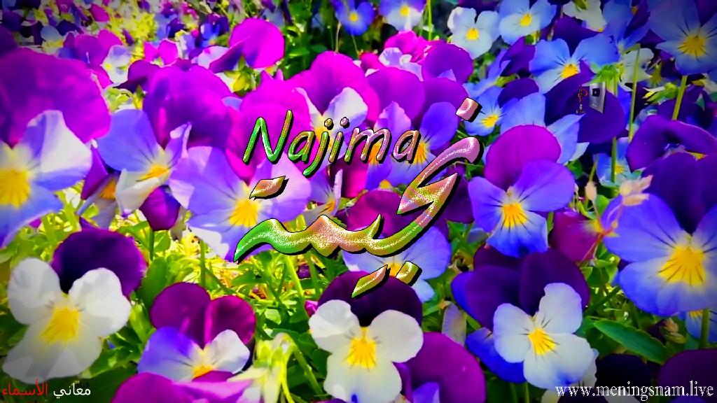 معنى اسم نجيمة وصفات حاملة هذا الاسم Najima