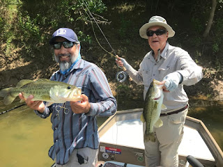 Marcos Rodriguez, Brazos River, Fish Spotlight, Largemouth Bass, Northern Strain Largemouth Bass, Florida Strain Largemouth Bass, Largemouth Bass in Texas, Bass on the Fly, Fly Fishing for Bass, Texas Bass Fishing, Texas Fly Fishing, Fly Fishing Texas, Texas Freshwater Fly Fishing