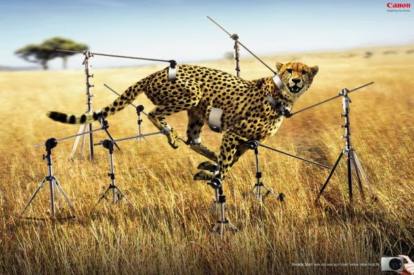 20+ Brilliant & Creative print advertisements you would love for sure