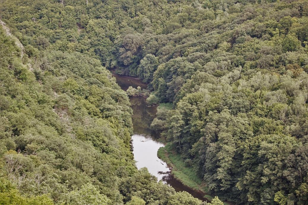 řeka Dyje z věže Nového Hrádku u Lukova