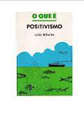 Coleção Primeiros Passos O que é positivismo.pdf