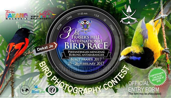 Fraser's Hill Bird Photography Contest 2017