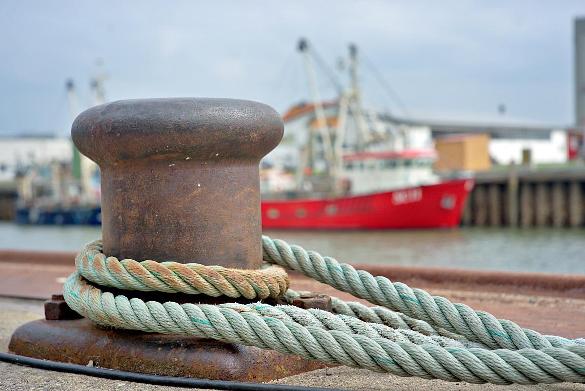 Im Büsumer Hafen (2)