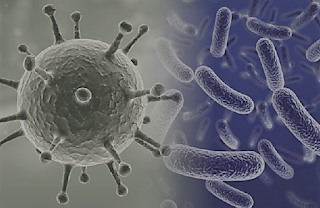 الاخماج infektions