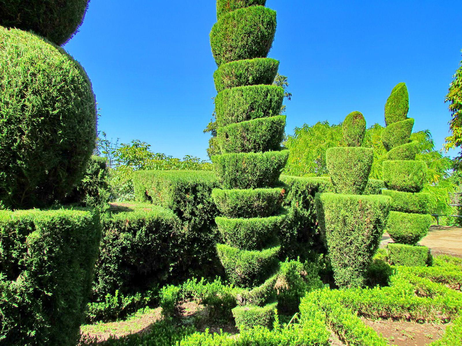 art in a garden