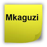 mkaguzi.com