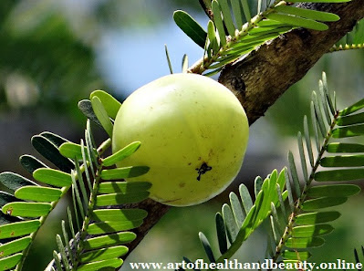 How can we use Amla for hair growth?