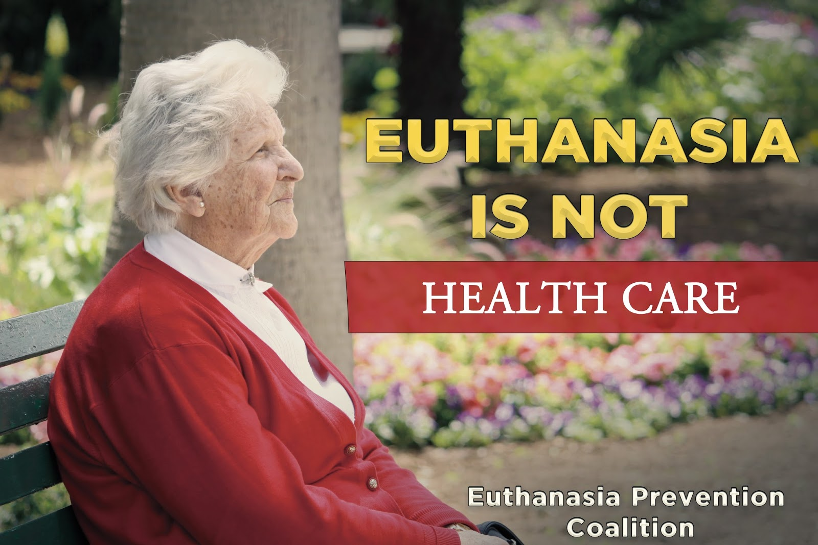 against euthanasia papers