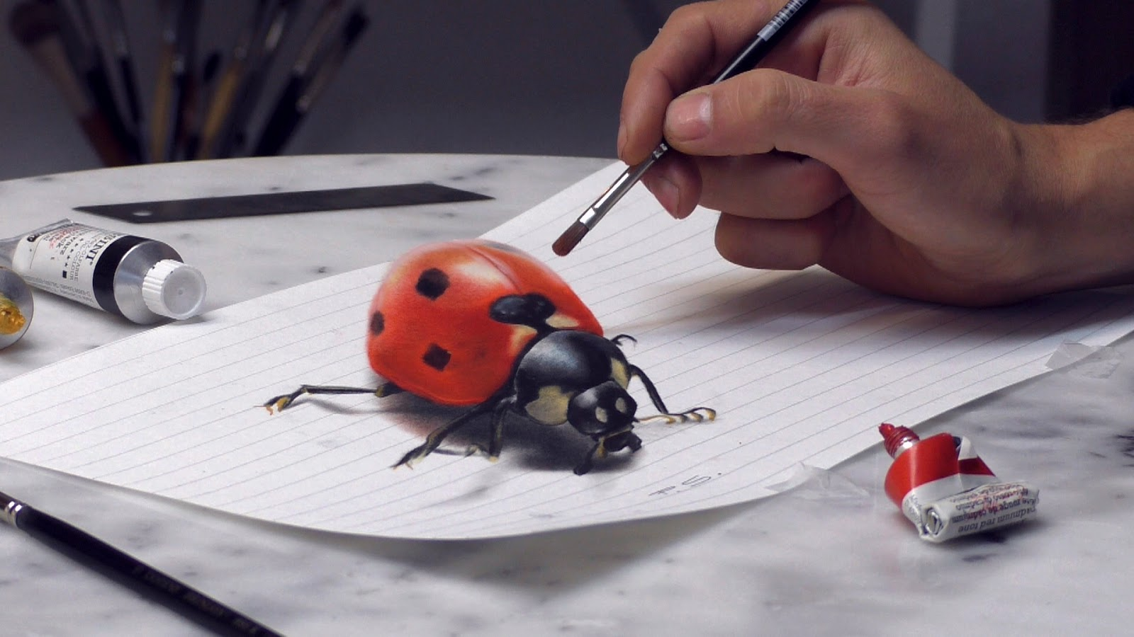 10-Ladybug-Stefan-Pabst-3D-Optical-Illusions-Drawings-and-Paintings-www-designstack-co
