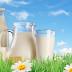Çiğ Süt Desteklemesi Tebliği