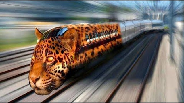Top10 Fastest Trains In The World
