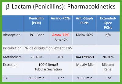 B_Lactam_Penicillins_Pharmacokinetics
