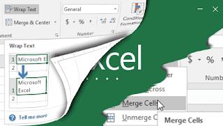 Gambar memodifikasi kolom baris sel excel 2016