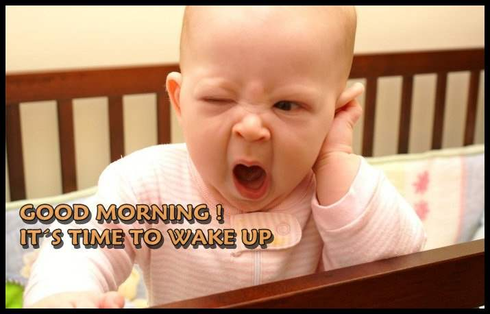 Funny Wake Up Quotes
