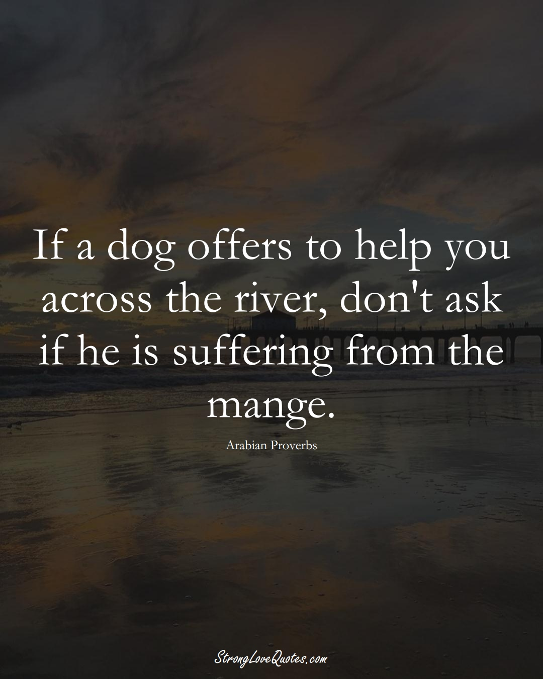 If a dog offers to help you across the river, don't ask if he is suffering from the mange. (Arabian Sayings);  #aVarietyofCulturesSayings