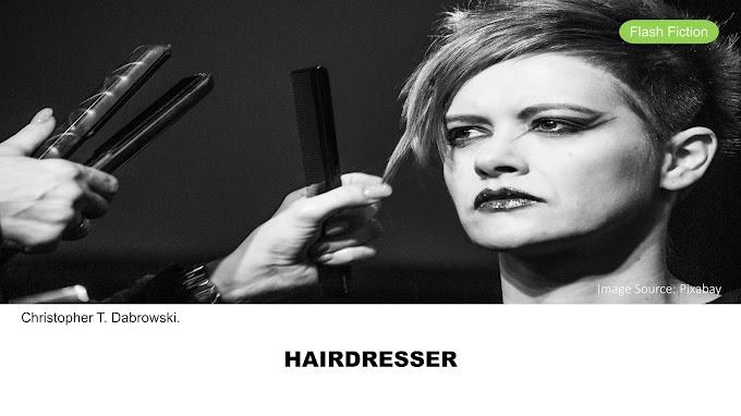 Hairdresser by Christopher T. Dabrowski