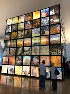 Foto Sylvia Leite - Matéria Museu do Amanhã -BLOG LUGARES DE MEMÓRIA