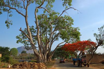 nandi hills, bangalore tourism, nandi durga, bangalore hill station, bangalore forest, bangalore wilderness, chikka ballapur, incredible india, bengaluru