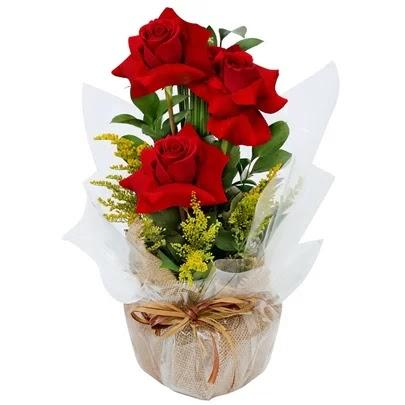 Mandar Flores - Presente Que Nunca Sai de Moda