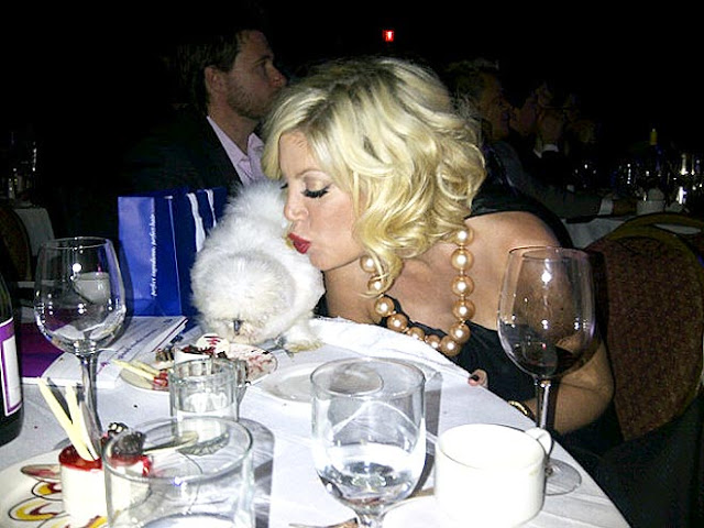 tori spelling and her silkie at dinner