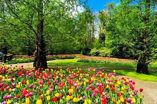 Αποτέλεσμα εικόνας για κήπος