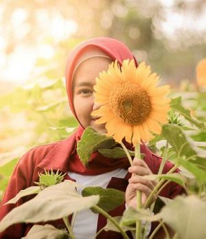 Taman Bunga Matahari Banten