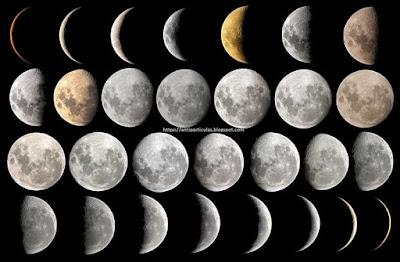 Ciclo lunar completo, Revolución Sinódica