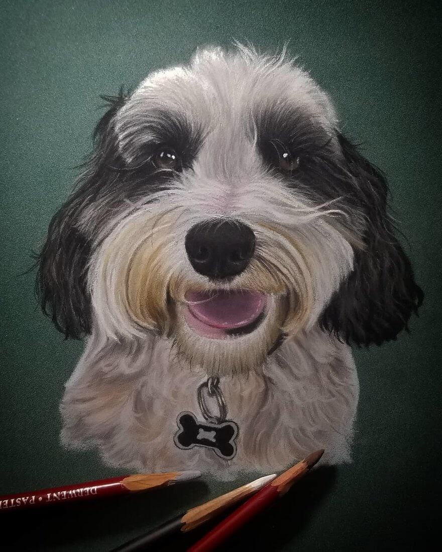10-Dog-Rene-Lopez-Animal-Pencil-and-Pastel-Portrait-Drawings-www-designstack-co