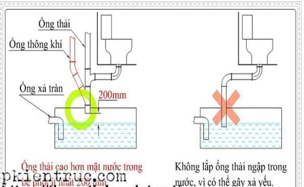 Lưu ý lắp ống thải bồn cầu xuống bể tự hoại