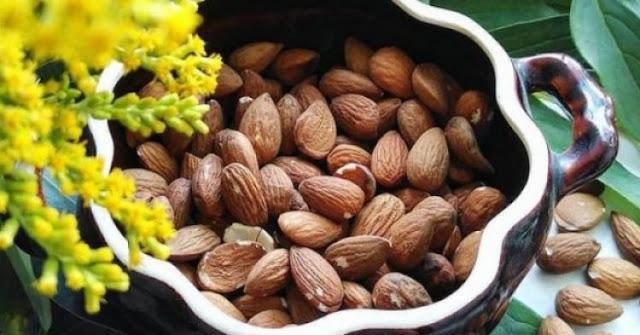 10 namirnica koje možete jesti prije spavanja bez brige o težini