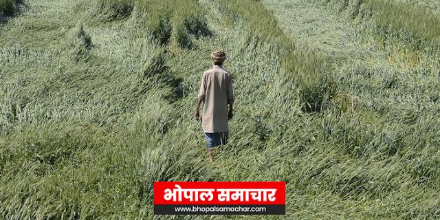 किसान की बदहाली सरकार ऐसे रोक सकती है | EDITORIAL by Rakesh Dubey