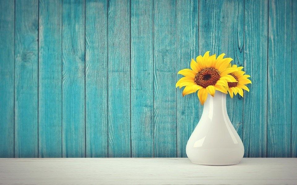 Gambar setangkai bunga matahari