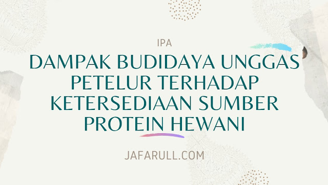 Dampak Budidaya Unggas Petelur Terhadap Ketersediaan Sumber Protein Hewani