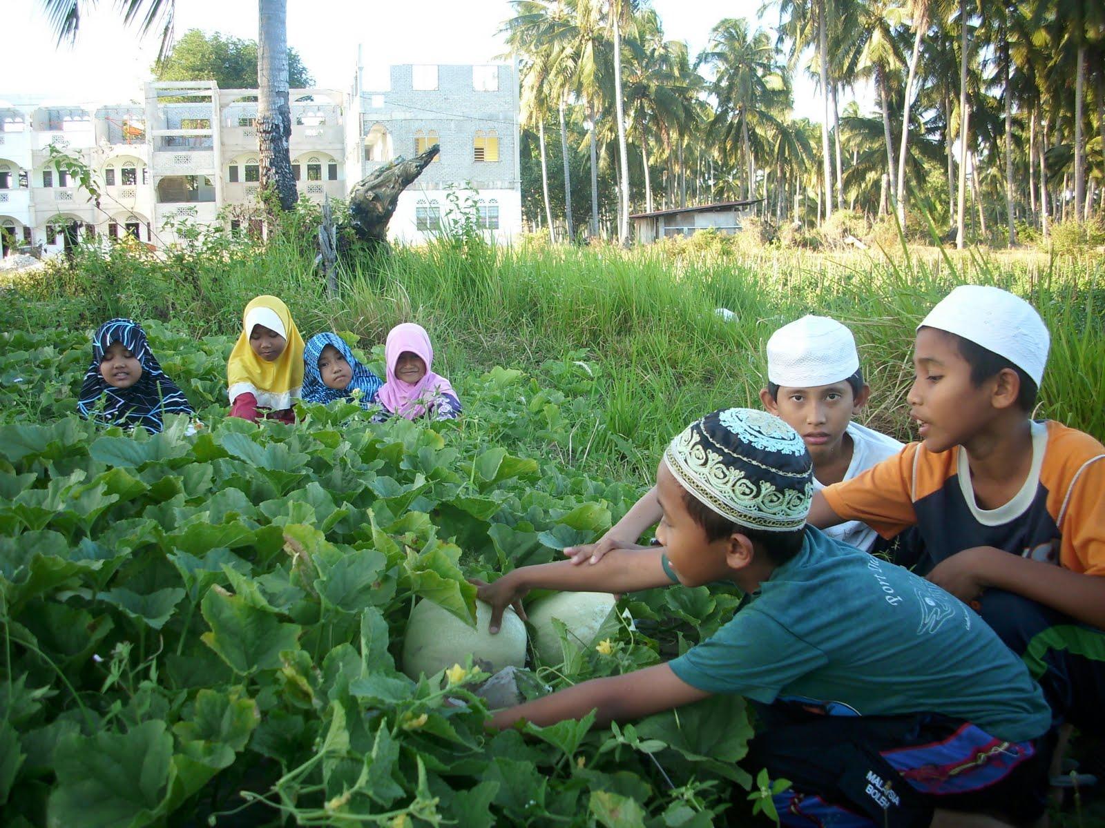 Rumah Anakanak Yatim Salimah Aktiviti Ekonomi