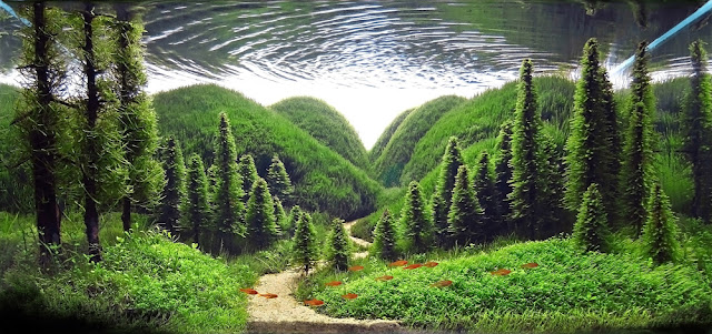foto karya seni aquascape yang menarik unik cantik dan menarik