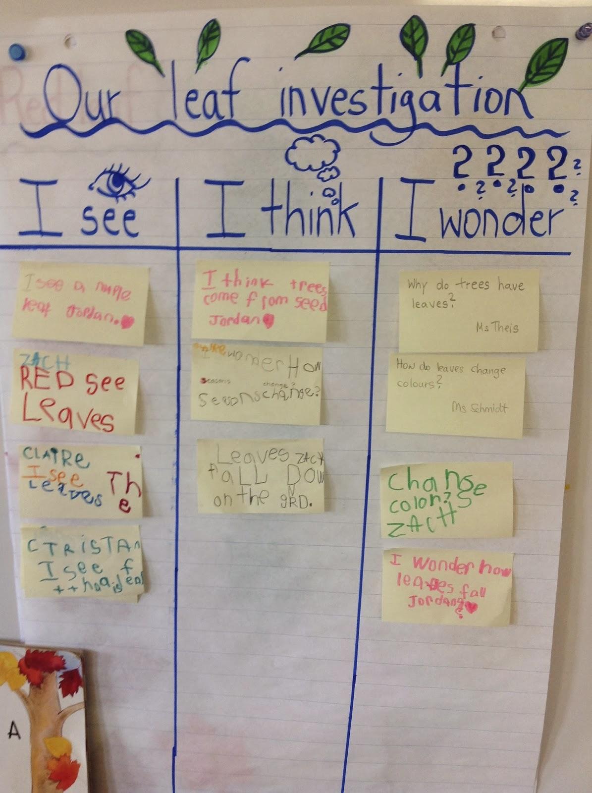 Our Kindergarten Journey Celebrating Our Think Work