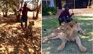 Photos Of Nollywood Actor, Jim Iyke Pettying Lions And Cheetah