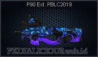 P90 Ext. PBLC2019