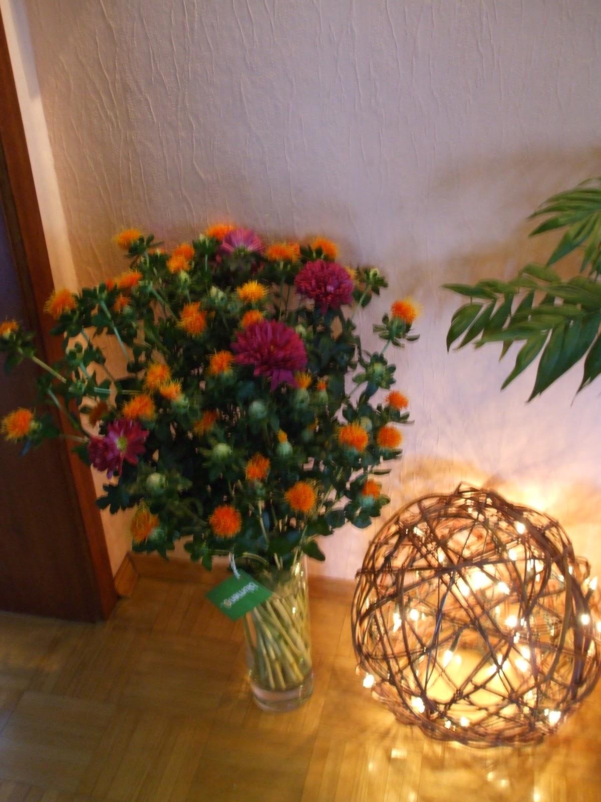 Biggis erster TestBlog blumenode Blumenservice fr