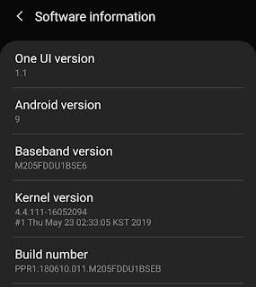 Software build number