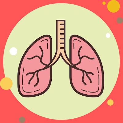 Yuk Waspadai Beberapa Penyakit yang Menyerang Paru-paru
