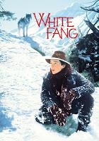 White Fang 1991 Dual Audio Hindi 720p HDRip