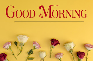Good Morning Royal Images Download for Whatsapp Facebook10