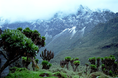 Rwenzori Mountains National Park is a Ugandan national park and UNESCO World Heritage Site located in the Rwenzori Mountains. Almost 1,000 km² in size, the park has Africa's third highest mountain peak and many waterfalls, lakes, and glaciers